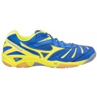 Mizuno WAVE STEAM 2 - Men's indoor shoes