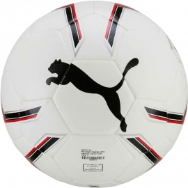 Puma PRO TRAINING 2 FUSION BALL